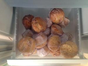 freezer_muffins